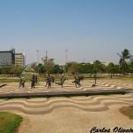 Praça dos girassóis