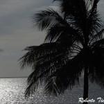 Praia Ponta D´areia